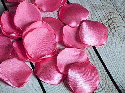 25 CARNATION satin rose petals, ready to ship