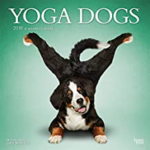 Yoga Dogs 2018 12 x 12 Inch Monthly Square Wall Calendar
