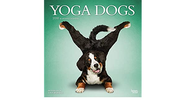 Yoga Dogs 2018 Wall Calendar: Amazon.es: Inc Browntrout ...