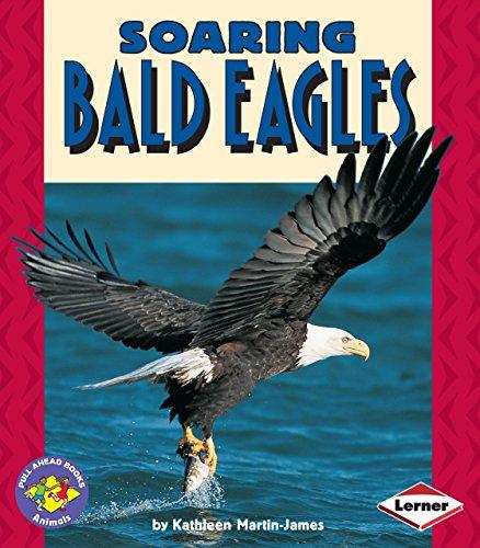 Soaring Bald Eagles (Pull Ahead (Illustrated Bald Eagle)