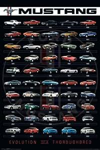 Póster Ford Mustang Evolution/Evolución del Ford Mustang (61cm x 91,5cm)