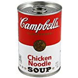 BigMouth Campbell's Chicken Noodle Soup Decoy Can Safe