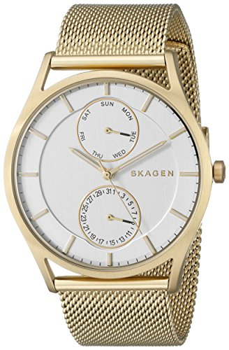 Skagen Men's SKW6173 Holst Gold Mesh Watch