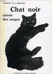 Chat noir miroir des songes 9782902995127 books for Miroir noir download