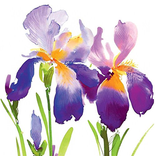 Paperproducts Design 1252373 Purple Iris Beverage Paper Napkin,