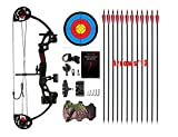 PANDARUS Compound Bow Topoint Archery for Youth and Beginner, Right Handed,19'-28' Draw Length,15-29 Lbs Draw Weight,...