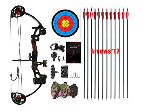 "PANDARUS Compound Bow Topoint Archery for Youth and Beginner, Right Handed,19""-28"" Draw Length,15-29 Lbs Draw Weight, 260 fps, Package with Archery Hunting Equipment (Black)"