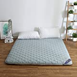 hxxxy Dorm Futon mattress topper,Tatami floor mat Queen size Single size-A 90x200cm(35x79inch)