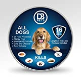 Dog Flea Treatment Collar - Flea and Tick Collar Prevention for Dogs and Cats + Tick Removers: 2 Pack Allergy Free, Adjustable to Large Medium and Small Dogs, 16 Month Protection, Safe and Waterproof, 25 Inches Cut to Size