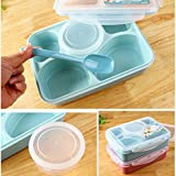 5-Compartment Microwave Safe Food Container with Lid/Divided Plate/Bento Box/Lunch Tray with Cover, 1-Pack, Get 1 Free Spoon