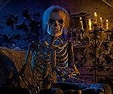 FX Window LED Video Halloween Projector