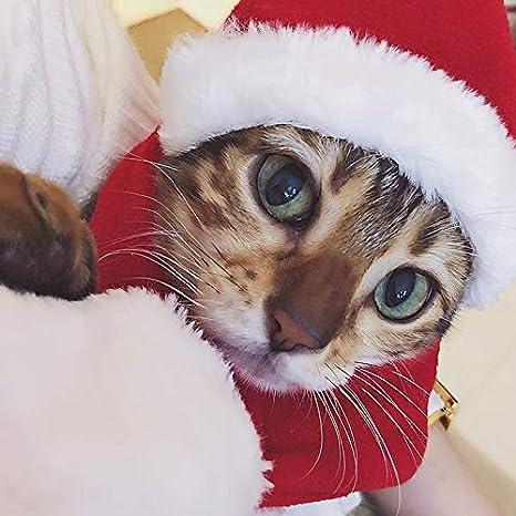 Pañuelo del gato de la Feliz Navidad, cuello y sombrero, bufanda del sombrero de la Navidad del animal doméstico fijada - pañuelo de cuello del gato del: ...