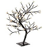 WeRChristmas 2ft (60cm) Pre-Lit Warm White 96 LED Illuminated Cherry Blossom Tree with Brown Trunk & Branches (suitable for Indoor/Outdoor)