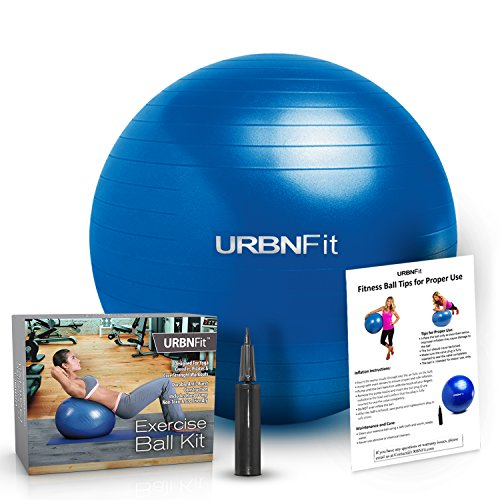 Exercise Ball (75 CM) for Stability & Yoga - Workout Guide Incuded - Professional Quality (Blue)