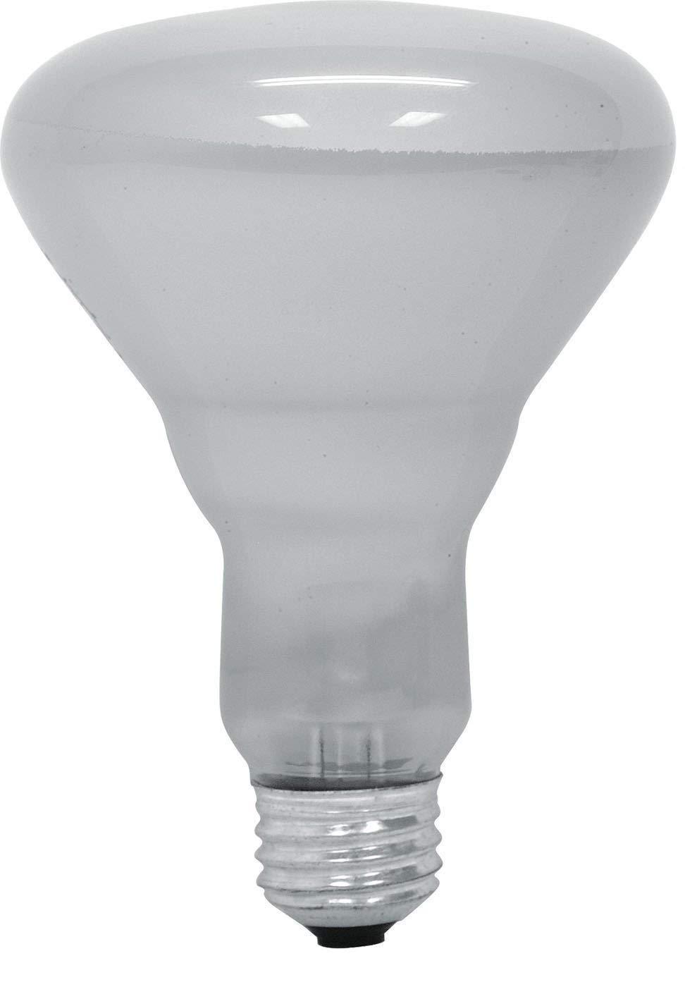 GE 65 Watt Soft White 580-Lumen Floodlight BR30 Light Bulb, (12 Pack)