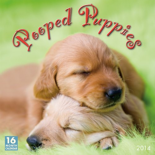 Pooped Puppies 2014 Wall (calendar) - Dogs 2014 Wall Calendar