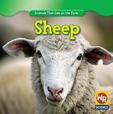Sheep, JoAnn Early Macken, 1433924005