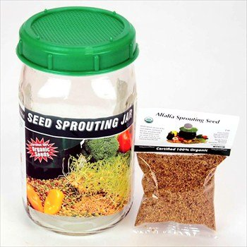 One Quart Glass Sprouter Jar W  Sprouting Strainer Lid  Grow Sprouts  Includes 2 Oz  Organic Sprout Seeds   Sprouting Instructions