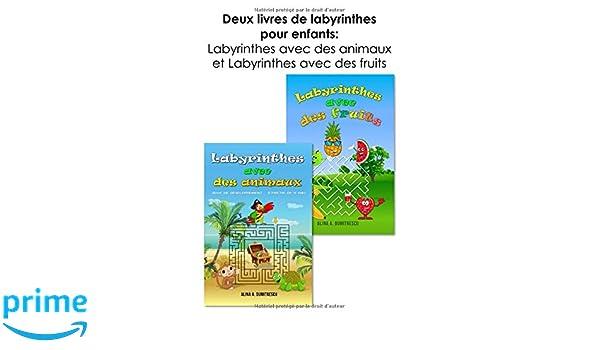 Deux Livres De Labyrinthes Pour Enfants Labyrinthes Avec