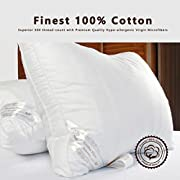 Amazon #LightningDeal 80% claimed: 1 or 2 Pack: DUCK & GOOSE CO Premium Hotel Quality White Microfiber Luxury Down Alternative Pillow, Hypo-Allergenic, 100% Cotton with Elegant Design