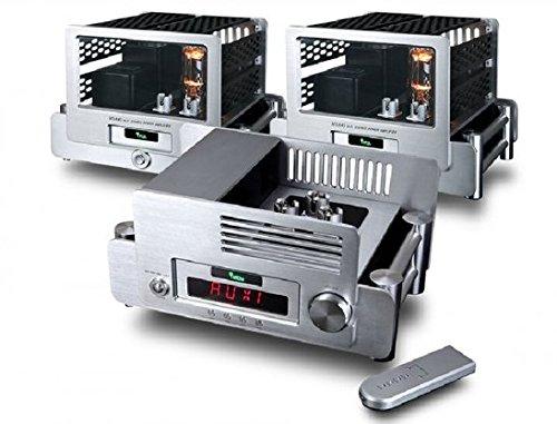 YAQIN MS-845 Vacuum Tube Hi-end Tube Mono Block Power Amplifier Pre-amplifier YAQIN