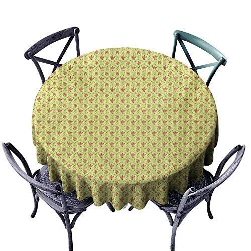 VIVIDX Indoor/Outdoor Round Tablecloth,Spring,Flourishing Roses with Leaves on Striped Pastel Green Background,High-end Durable Creative Home,35 INCH,Dark Coral Pistachio - Coral Pistachio Green