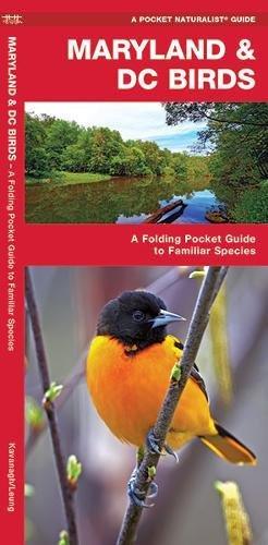 Maryland & DC Birds: A Folding Pocket Guide to Familiar Species (A Pocket Naturalist Guide) PDF
