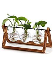 Propagation Station,Boho Decor,Plant Vase,Gewaha Home Creative Glass Crafts,Light Bulb Vases With Retro Solid Wood Brackets And Metal Rotating Rods,Table Top Glass Planters For Hydroponic Plants,High End Furnishings, Home Garden Wedding Decorations,Etc(3 Vases)