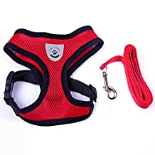 Cutefriend Pet Vest Harness for Small Dogs and Cats, with Free Leash, Breathable Mesh Pet Leash Collar, Comfortable & Adjustable, 3 size and 4 color for Selection (L, Red)