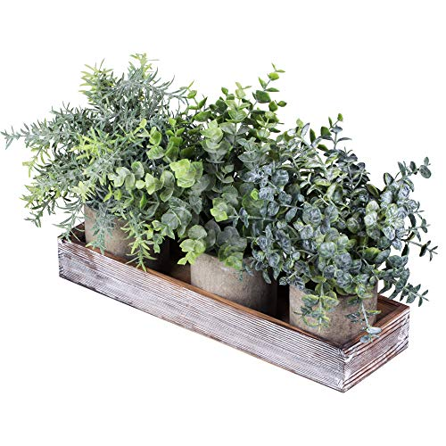 Set of 3 Mini Potted Artificial Eucalyptus Plants Faux Rosemary Plant Assortment with Wood Planter Box for Indoor Office…