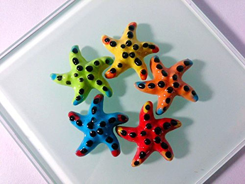 Set Tiny 5 Starfish Handmade Ceramic Painted Figurine Dollhouse Garden Decor/Home Decoration/Sea Animals Collection/Gift