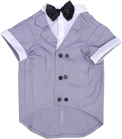 POPETPOP Camisa para perros, ropa para perros, traje, camisa de boda, diseño de Smoking con corbata negra, príncipe, disfraz de boda, para cachorros de perros, talla M (gris): Amazon.es: Productos para mascotas