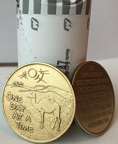 (Bulk Lot of 25 Camel Desert Scene One Day At A Time Bronze Medallions Chips )