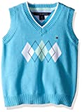 Product review for Tommy Hilfiger Baby Boys' Henry Sweater Vest