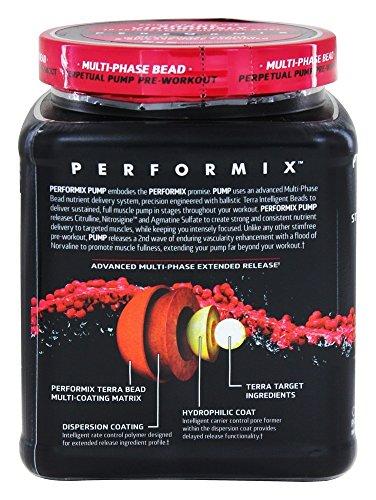 Performix - Pump Stim-Free Perpetual Pump Pre-Workout 40 Servings Tangerine - 8.27 oz.