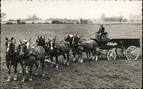 O'Keefes Ale Delivery Wagon and Team Horse Drawn Original Vintage Postcard