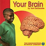 Your Brain, Terri DeGezelle, 073683351X