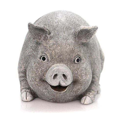 Pig Stone - 5