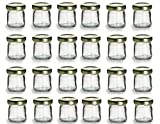 PremiumVials 24 pcs, 1 oz Mini Glass HONEY Jars for Jam, Honey, Wedding Favors, Shower Favors, Baby Foods, DIY Magnetic Spice Jars (24, 1 oz Honey w/Gold Lids)