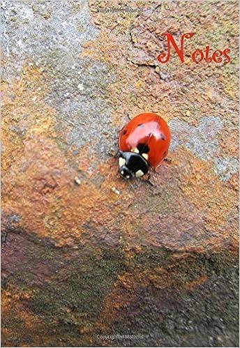 Book Mini Notizbuch - Marienkäfer: Notes, ca. A6, liniert