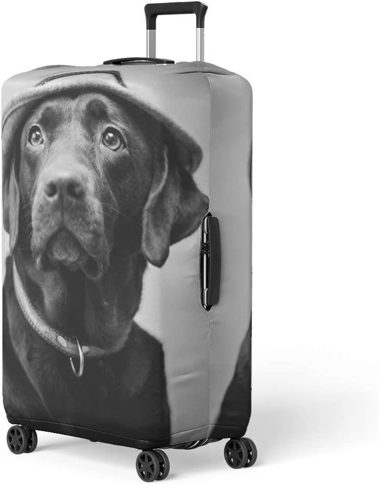 Pinbeam Luggage Cover Retro Styled Typographic Butchery Farm Animals and Butcher Travel Suitcase Cover Protector Baggage Case Fits 18-22 inches