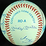 500 Home Run Club (11) Signed OAL Baseball (Mantle, Williams, Aaron) PSA AA06364