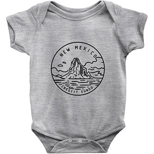 Tenn Street Goods New Mexico State Design - Unisex Infant Baby Onesie/Bodysuit (Heather, (Albuquerque New Mexico Street)