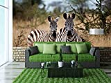 wall26 - Zebras in the High Grass of the Savanna, Serengeti National Park, Tanzania - Removable Wall Mural | Self-adhesive Large Wallpaper - 100x144 inches