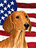 Caroline's Treasures SS4049CHF USA American Flag with Dachshund Flag Canvas, Large, Multicolor For Sale