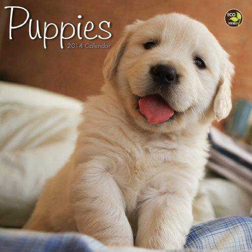 Dog 2014 Mini Calendar - 2014 Puppies Mini Calendar