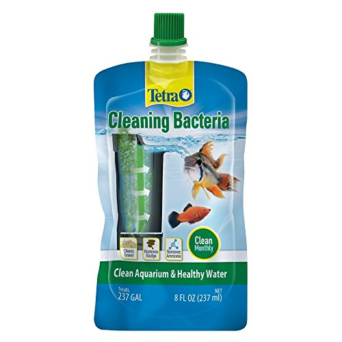 Tetra Cleaning Bacteria for