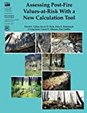 img - for Assessing Post-Fire Values-At-Risk With a New Calculation Tool book / textbook / text book