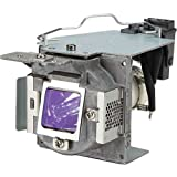 PC Hardware : Acer MC.JH511.004 Replacement Lamp for P1173 Projector Rear Projection TV Replacement Lamp