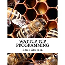 WATTCP TCP Programming